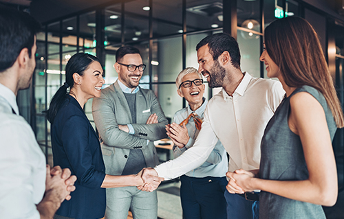 Group of business persons shake hands in the office
