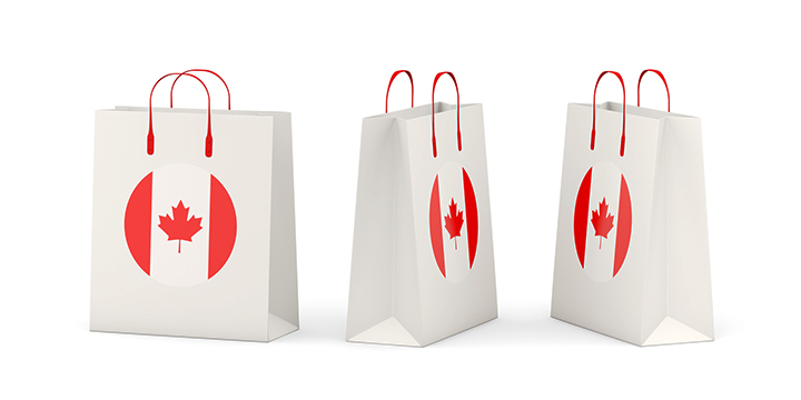 New Canada brand store and e-commerce model helps Canadians sell in India
