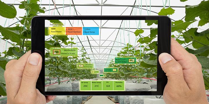 Participez au prochain accélérateur technologique canadien dans le domaine des technologies agricoles